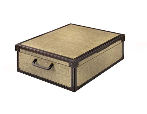 Kanguru Tapirus Caja de Almacenamiento en cartòn Lavatelli, Modelo, Multicolor, Bajo Cama, 60x50x17cm
