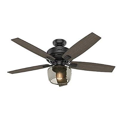 Hunter Fan Company 54187 Ceiling Fan, Large, Matte Black
