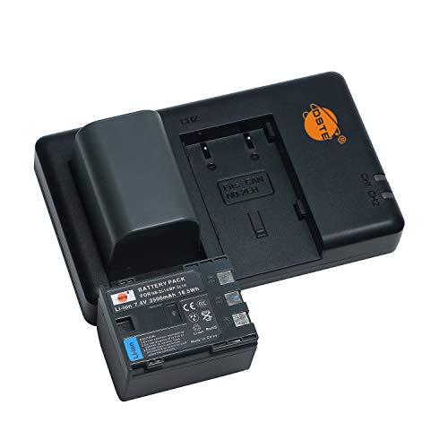 NB-2L14 NB-2L12 - Batería de repuesto recargable y cargador dual compatible con Canon IXY DV3, DV5, DVM3, ZR100, ZR500, ZR850, Elura 40MC, MV 5iMC, etc.