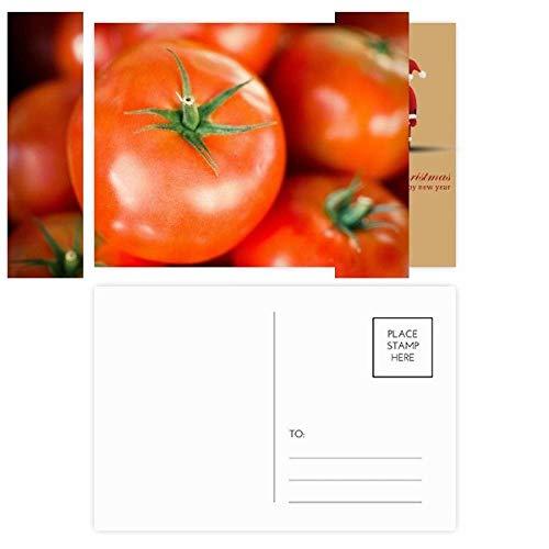 vers gematigd fruit tomaat beeld kerstman ansichtkaart set dank kaart versturen 20 stks