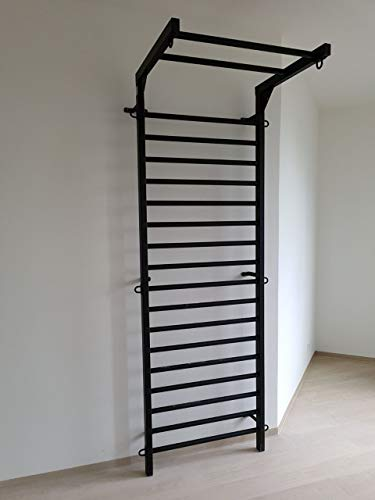 ARTIMEX Sprossenwand aus Metall (schwedische Leiter) für Gymnastik - Wird in Heimen, Turnhallen, Sporthallen oder Fitnesscentern verwendet, 265 x 100 cm, Code 231-Gladiator-90