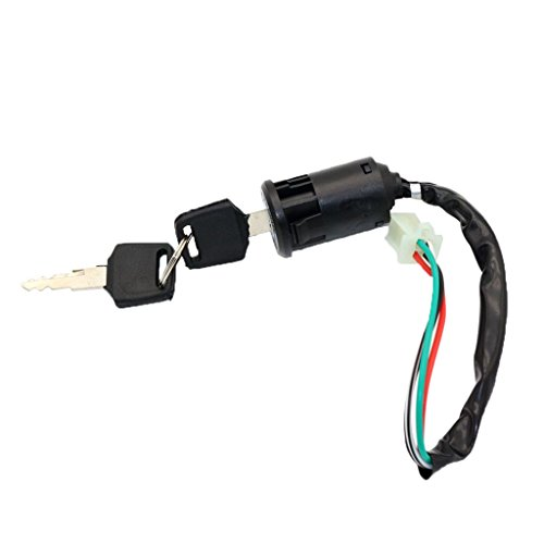 B Blesiya Interruptor de Encendido Cerradura de Encendido 4 Cables 2 Llaves para 50/110/125/250 Cc ATV
