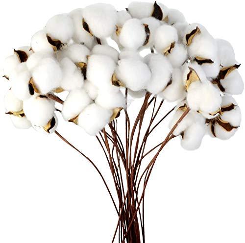 Ruiuzioong - Fiori artificiali in cotone naturale essiccato di fattoria, per composizioni floreali, fai da te, decorazione di casa e feste