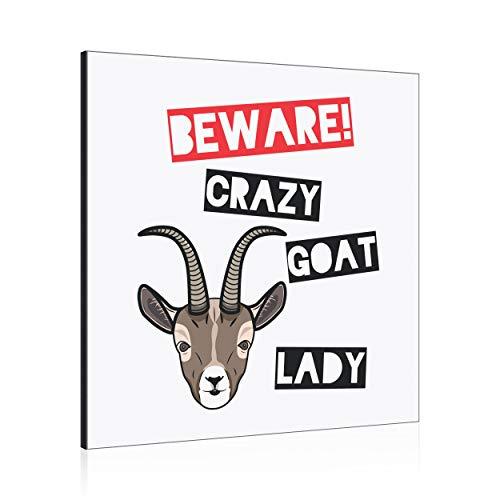 Beware Loco Cabra Mujer Decoración de Pared Panel Marco de Fotos