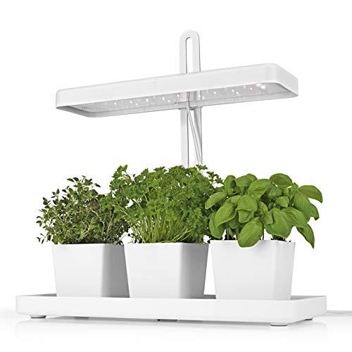 MAXXMEE LED-Pflanzenleuchte 3 Töpfe | Höhenverstellbar, unterstützt Pflanzenwachstum | Modernes Design | 3 Töpfe für Pflanzen, praktische Timer-Funktion [weiß]…