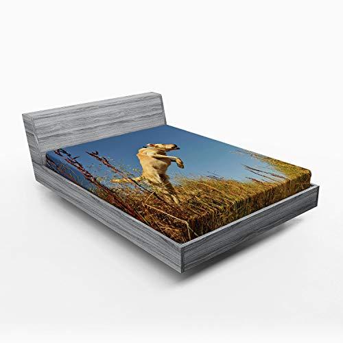 ABAKUHAUS Caza Sábana Elastizada, Pura Raza Labrador, Suave Tela Decorativa Estampada Elástico en el Borde, 120 x 190 cm, Multicolor