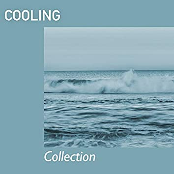 # 1 Album: Cooling Collection