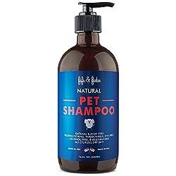 Bestes Shampoo für ein Cockapoo - Unsere Top-Auswahl