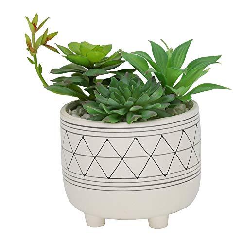 Flora Bunda Mid Century Artificial Plants Cactus Artificial Succulent Mix in 6 Inch Geometric Hand Painted Planter with Legs,6' White/Black Line