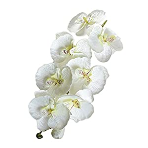 Sureh – 6 ramas artificiales de 72,4 cm, diseño de orquídeas falaenopsis, 8 cabezas de tacto real Phalaenopsis orquídea…