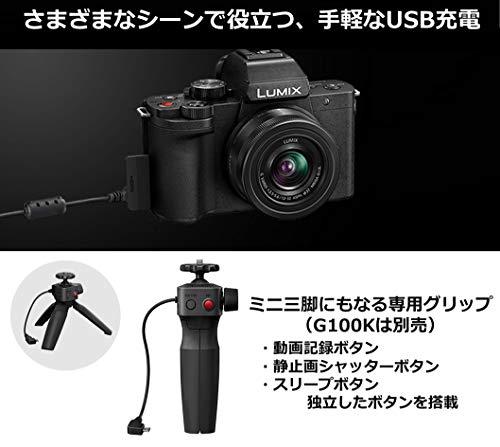 Panasonic(パナソニック)『LUMIX(DC-G100)』