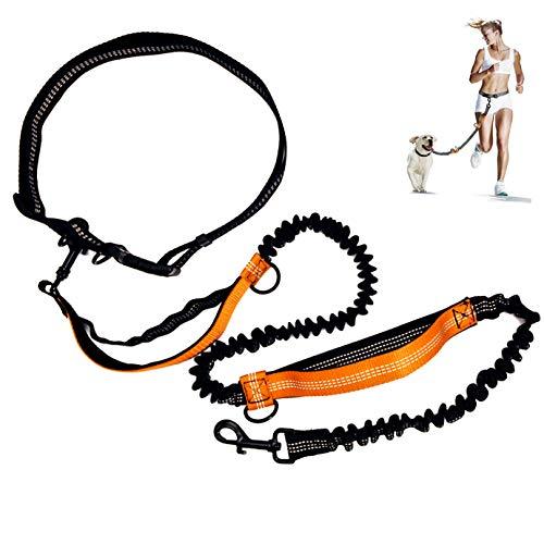 Handfreie Hundeleine Für,Hunde Joggingleine Mit Taille Laufen Einstellbar,Dual Griffe Reflektierende Nähte,Ideal Zum freihändigen Joggen,Spazieren und Wandern