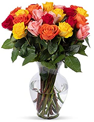 Benchmark Bouquets 2 Dozen Rainbow Roses, With Vase (Fresh Cut Flowers) by Benchmark Bouquets