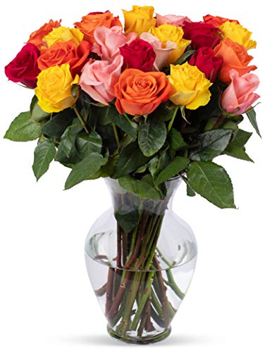 Benchmark Bouquets 2 Dozen Rainbow Roses, With Vase (Fresh Cut Flowers)