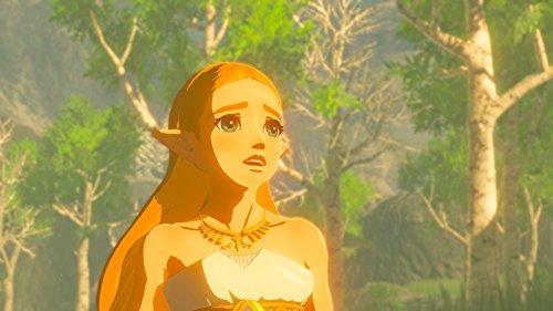 Legend of Zelda: Breath of the Wild [Nintendo Switch] - 3