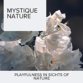 Mystique Nature - Playfulness in Sights of Nature