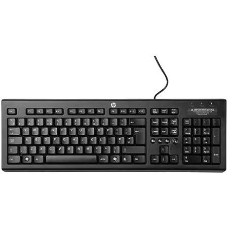 HP Classic Wired teclado de la PC / Mac, Teclado: Amazon.es ...