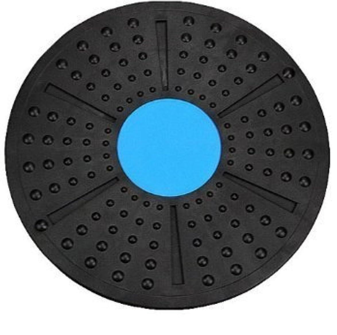 ハシー心のこもった興味体幹トレーニング ダイエット エクササイズ メディカルサポート バランスボード 2色 これ1つで全身運動 (青×黒)