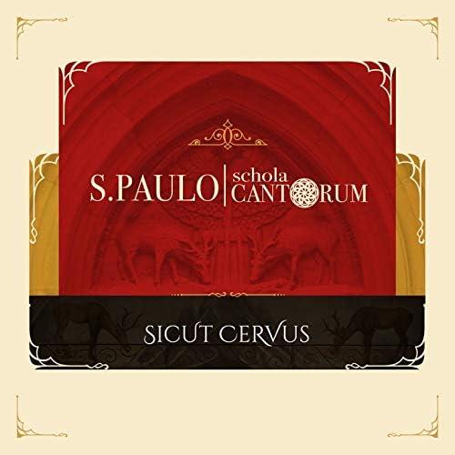 S. Paulo Schola Cantorum