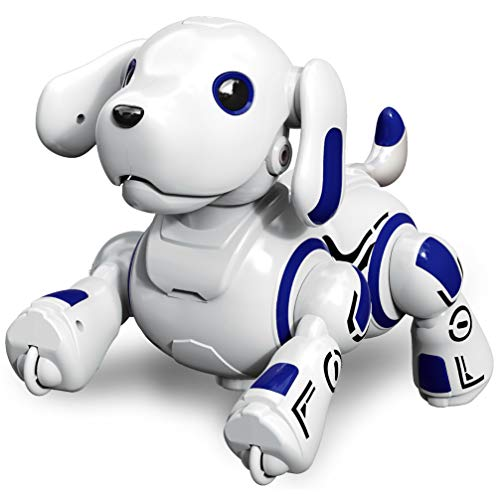 Hi-Tech Wireless Remote Controlled Robot Dog Interactive Robot Puppy for Kids, Children, Girls, Boys (Blue)