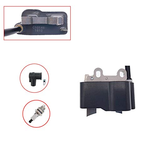 PARTSRUN ID#C10146 Ignition Coil with Spark Plug and Boot kit Replaces A411000290 A425000100 for Echo PB-255LN PB-251 ES255 PB265L PB265LN, Leaf Blower & Vacuum, TL18-0290 ZF271-B-HHS