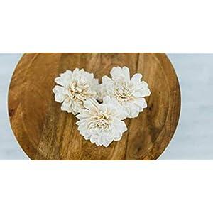 Sola Wood Flowers – 3″ Dahlia (Pack of 10)