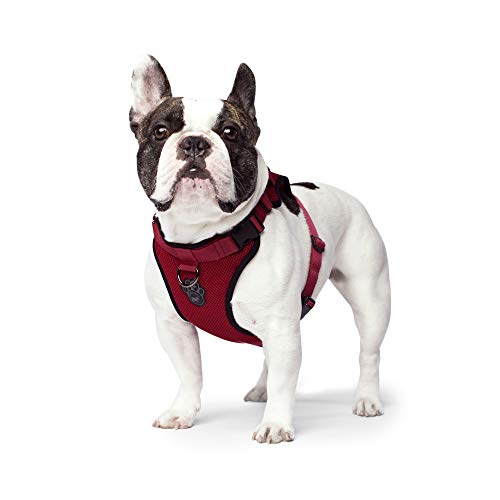Dog Harness Canada