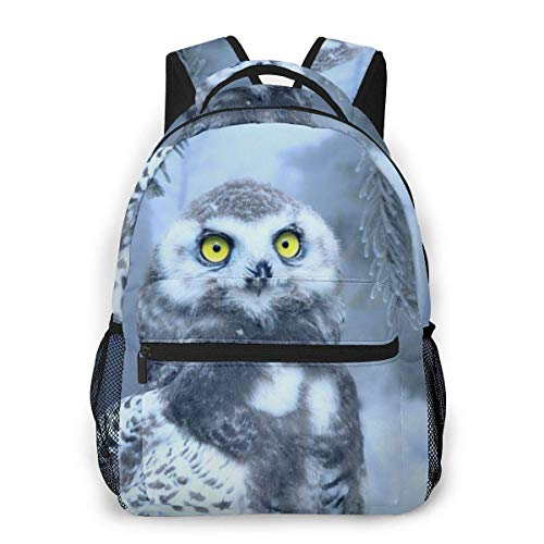 Lawenp Fashion Unisex Backpack Snow Covered Owl Bookbag Lightweight Laptop Bag for School Travel Outdoor Camping