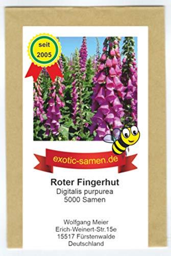 Roter Fingerhut - Digitalis purpurea - Wichtige Hummelnahrung - 5000 Samen