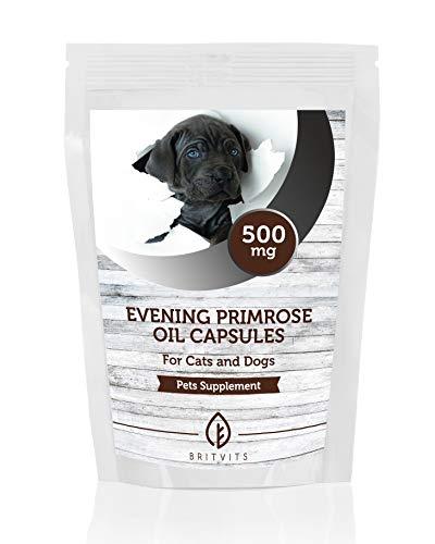 Aceite de onagra para gatos y perros 500 mg 500 cápsulas