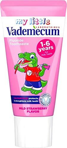Vademecum Junior Fluoride Toothpaste Zahnpasta, Strawberry, 50 ml
