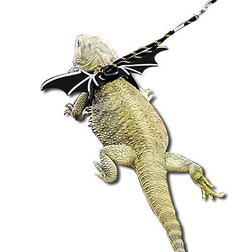 WATFOON Adjustable Bearded Dragon Harness Lizard Leash Reptile Training Lead Cool Wings for Amphibians Chameleon Leopard Gecko Anole Guinea Pig Ferrets Hamster Rats Small Pet Animals (M, Black Yellow)