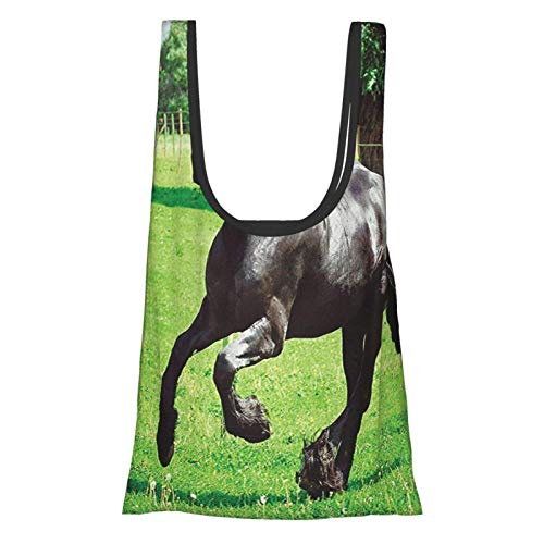 Xinkaize Animal Decor Firesian Male Horse Masculine Driving Force of Life Power Inner Strenghth Symbol Print...