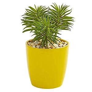 "for Mixed Succulent Artificial Plant in Yellow Vase Decor 9"" Set of 3 Floral Décor Home & Garden"