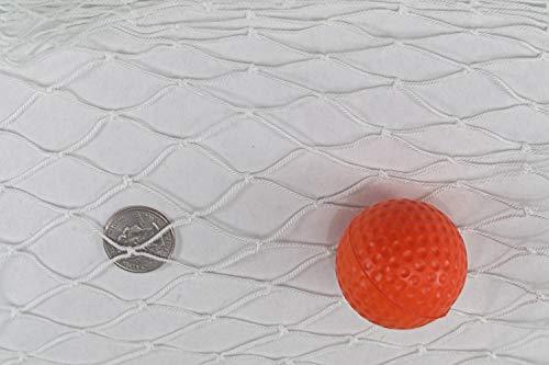 Fishing Net, Lake Net, Seine Netting, Nets for Gardens, Predator, Pet Net, Dog Cat Fence 35' x 12'