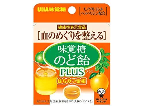 味覚糖 味覚糖のど飴プラス はちみつ金柑 小袋 1箱(10袋)