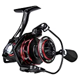 RUNCL Spinning Reel Titan II 6000, Fishing Reel - Full Metal Body, Max Drag 44LB, 5 Carbon Fiber Drag Washers, 9+1 Stainless Steel Shielded Bearings, Hollow Out Rotor - Saltwater & Freshwater Fishing