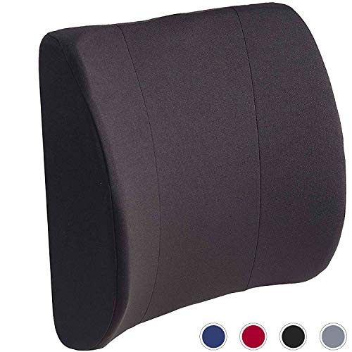 DMI Lumbar Support Pillow for Office or Kitchen Chair, Car Seat...