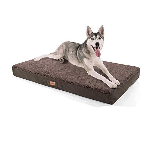brunolie Balu sehr großes Hundebett in Dunkelbraun, waschbar, orthopädisch und rutschfest, kuscheliges Hundekissen mit atmungsaktivem Memory-Schaum, Größe XL (120 x 72 x 10 cm)