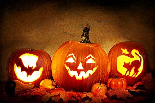 Jack O' Lantern: A spooky poem about Halloween's dreaded Jack o' Lantern! (English Edition)