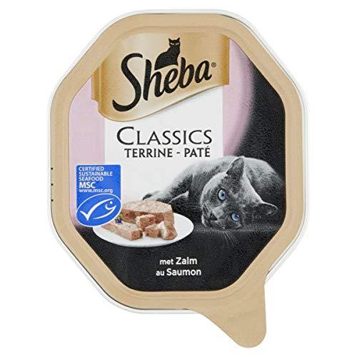 Sheba alu classics pate met zalm kattenvoer 85 GR