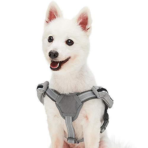 UMI. Essential Reflektierendes Hundegeschirr mit Neoprenpolsterung, Elegantes Grau, Klein, verstellbares Geschirr für Hunde