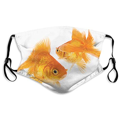 Cute Goldfish Cloth Face Mask with Filter Pocket Nose Wire Adjustable Ear Loops