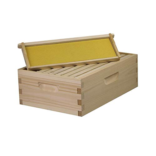 Busy Bees 'N' More Amish Made Langstroth Bee 8 Frame Medium/Super Box w/Frames and Foundations