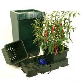 System Hydrokulturen Autopot 2POTS–Easy2Grow funktioniert ohne Pumpe