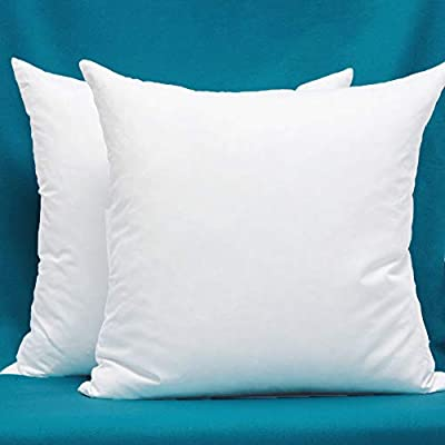Set of 2, Cotton Fabric Pillow Inserts, Filled with Down and Feather Decorative Throw Pillows Inserts, 22 x 22 Inches