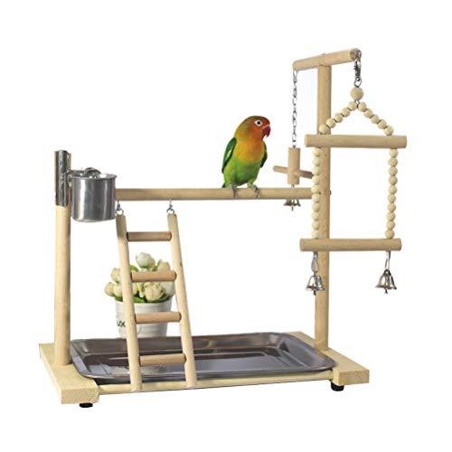Dytiying Pino loro pájaro patio patio jaula juego juego gimnasio periquito patio patio escalera con alimentador taza pájaros juguetes swing masticar juguete