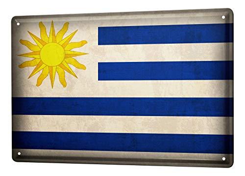 LEotiE SINCE 2004 Blechschild Dekoschild Küche Garage Welt Reise Uruguay Flagge Wand Deko Schild 20X30 cm