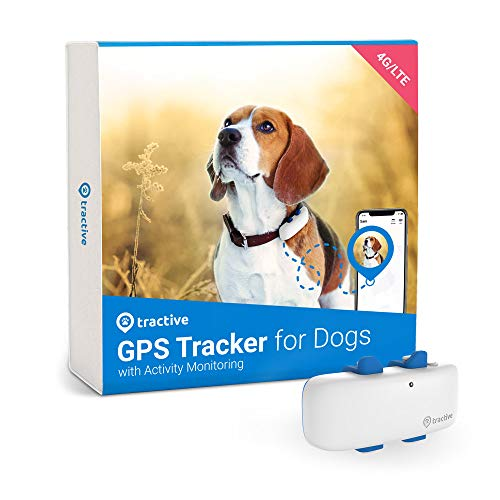 Tractive LTE GPS Dog Tracker - Location & Activity Tracker for Dogs with Unlimited Range (Newest Model), White (TRNJAWH)