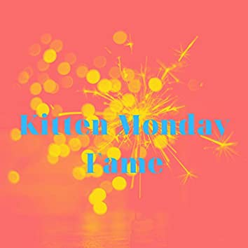 Kitten Monday Fame